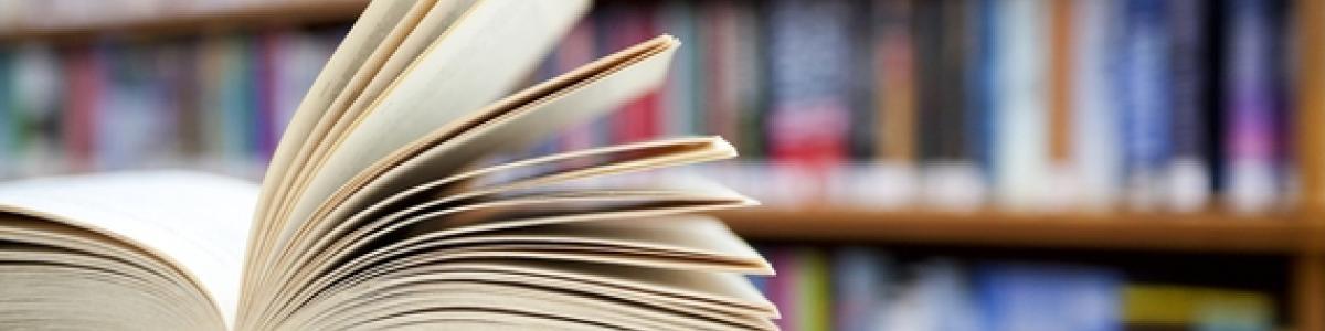 Заказать диплом по русскому и литературе